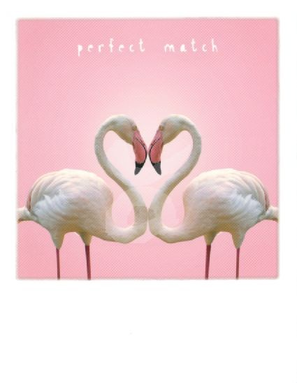 Perfect Match Flamingo-Herz Kunstkarte